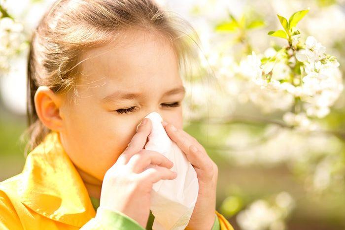 Аллергическая реакция может не касаться непосредственно органов дыхания, то есть спровоцировать ее способен обычный контакт с аллергеном, например, с животным, пыльцой или каким-то продуктом.
