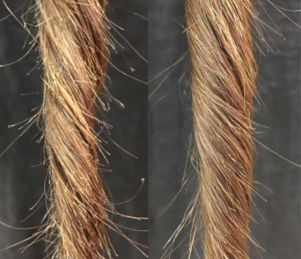 как убрать секущиеся волосы фото индекс