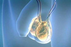 Подробное описание стероидного препарата Сустанон 250