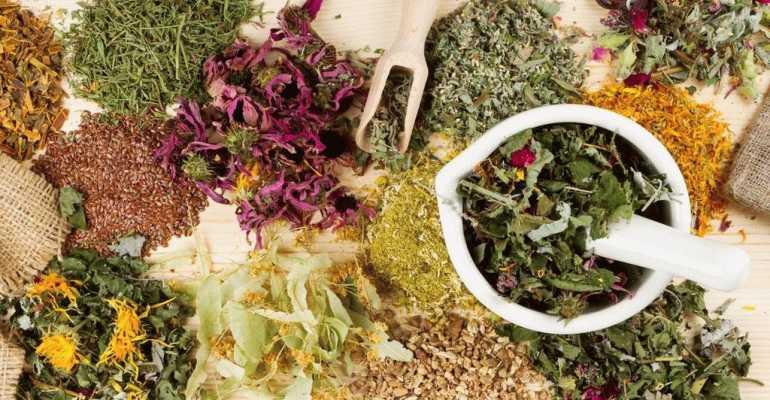 Как использовать травы для лечения суставов