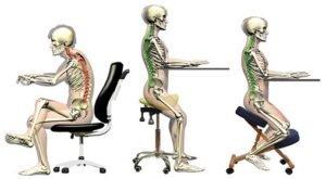 Принцы действия ортопедических стульев для осанки